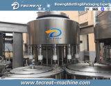 Embotelladora de pequeña capacidad del agua potable con la capacidad 4000bph