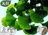 Uittreksel 100% Natuurlijke CAS Nr van Biloba van Ginkgo.: 90045-36-6