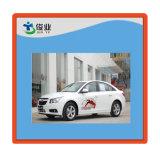 De Sticker van het Lichaam van de auto
