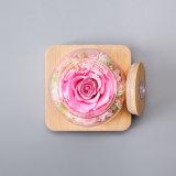 Regalo luminoso del fiore fresco per la decorazione