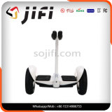電気スマートなバランスは蹴りのスクーターを立てる