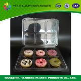 Imballaggio della bolla, contenitore di alimento di disegno di imballaggio dell'hamburger