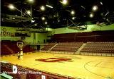 Profeeeional PVC y vinilo suelos Deportes Baloncesto utiliza tanto para interiores y exteriores