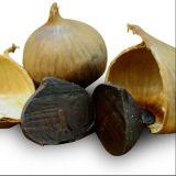 L'aglio nero fermentato organico della FDA per regola l'equilibrio dello zucchero di anima