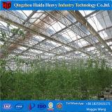 De UV Behandelde Serre van de Bloem, de Serre van het Landbouwbedrijf voor Commercieel Gebruik