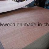 La base Bintangor /Okoume/Birch/Pine del álamo de China 18m m hizo frente a la madera contrachapada