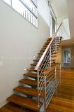 Escalera de interior de madera de la escalera de la barandilla del acero inoxidable
