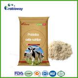 Les cheptels bovins enregistrés par FDA Probiotics affourragent des additifs alimentaires de vache acidifiant