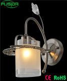 Стеклянное привесное освещение светильника стены зажима (9371/1W)