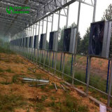 Gewächshaus-Kühlgebläse-Ventilator 2018 mit niedrigem Preis