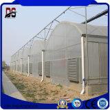 Une forte structure couverte de film de la Chine serre Fournisseur avec ventilateur