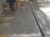 Flooring를 위한 Polished G603 Granite Tiles