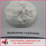 Polvere steroide androgena anabolica Boldenone Cypionate di CAS 106505-90-2