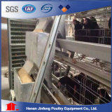 Jinfeng Conception Cgae pour la vente de poulets de chair de poulet en Afrique du Sud de la cage de poulet pour Big ferme avicole