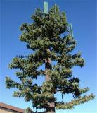 Bionicマツココヤシの木コミュニケーション木タワー