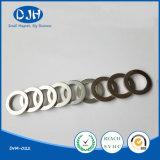 Permanenter gesinterter Ring-Form-Neodym NdFeB Magnet
