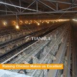 工場高品質の鶏の卵の養鶏場装置の価格