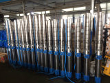 pompa sommergibile dell'acqua di pozzo profondo 6sp30-20