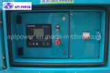 Diesel Generator met Motor Perkins