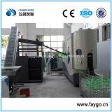 Tipo lineare macchina ad alta velocità dello stampaggio mediante soffiatura della bottiglia dell'animale domestico