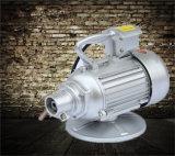 Hot vendre efficace Portable vibreur pour béton /Spear vibrant