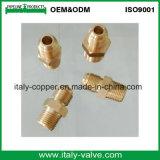 Entrerrosca recta de cobre amarillo del acoplador del SAE (AV9029A)