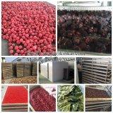 La Chine à cheveux de la machine pour l'utilisation industrielle de fruits de tabac de feuilles de thé sécheur de la nourriture de la mer