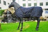 Segeltuch-Pferden-Wolldecke-/Pferden-Blatt-/Horse-Zudecke (HS-194)