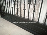 熱い電流を通すおよび力のコーティングが付いている住宅の錬鉄のゲート