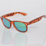 Os óculos de sol de grande resistência da fonte da fábrica marcam seus próprios, vidros do estilo de vida de UV400 Seasun