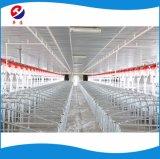 多くの養豚場による非常に普及したブタのオーガーの自動挿入システム