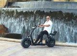 حارّ عمليّة بيع كهربائيّة درّاجة ناريّة درّاجة أماميّة يثبت [1000و] [إ-سكوتر]