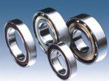 Rodamiento de bolitas angular del contacto 7002 7905