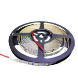 Bonne qualité Bright SMD2835 LED Strip Light