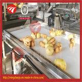 Limpieza vegetal de múltiples funciones de la limpieza de la lavadora/de la col de la fruta