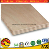 Commercial Timber Poplar/Birch/Prick 18mm Plywood for Furniture