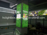 Алюминиевое Frameless Fabric и Textile Advertizing Light Box