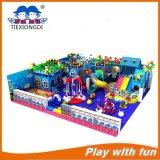 De aantrekkelijke Apparatuur van de Speelplaats van de Speelplaats van Kinderen Commerciële Binnenlandse Binnen/Ongehoorzaam Kasteel