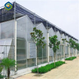 Low Price High Quality PC Sheet Agriculture Greenhouse