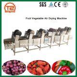 온도 조정가능한 과일 야채 공기 건조용 기계