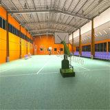 大きいスペースとの鋼鉄構築の体育館の体操
