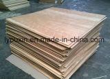EF Clay Birch Plywood (BPEF-HT01E)