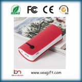 5200mAh Batterie chargeur portatif Two-Cell ABS