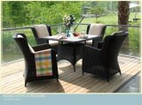 A cadeira de jantar de vime do Rattan ao ar livre ajustou-se para o pátio e o hotel ao ar livre