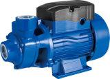Водяная помпа малого вортекса Qb60 0.5HP электрическая для шимпанзеа чистой воды
