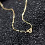 Van het roestvrij staal Halsband van het Hart van de c- Brief de Korte Aanvankelijke