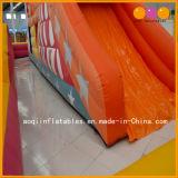 子供のゲームの膨脹可能な遊園地の警備員およびスライド(AQ13178)
