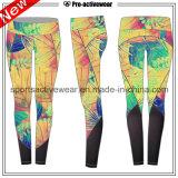 Pantaloni bassi di yoga di alta qualità più poco costosa MOQ del campione libero