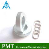 Miniseltene Massen-Magnet des ring-N48 mit Neodym-magnetischem Material