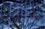 [لد] يشعل شجرة حديقة زخرفة يزيّن [كريستمس تر] أفكار